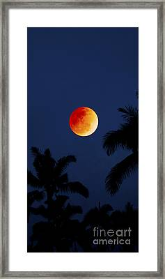 Blood Moon In Hawaii  - Triptych   Part 1of 3 Framed Print by Sean Davey
