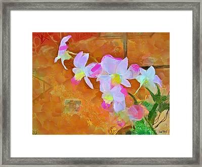 Bloom Framed Print by Wayne Pascall