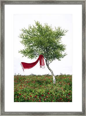 Blowing In The Wind Framed Print by Joana Kruse
