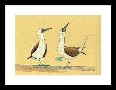Bird Paintings Framed Prints