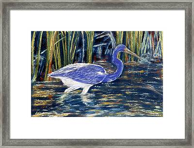 Framed Print featuring the pastel Blue Heron by Jan Amiss