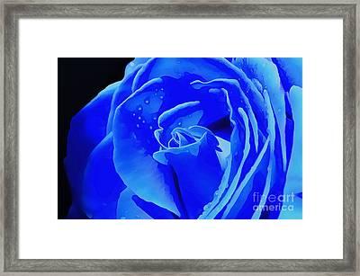 Blue Romance Framed Print by Krissy Katsimbras