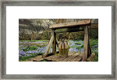 Bluebell Fields Framed Print by Martin Newman