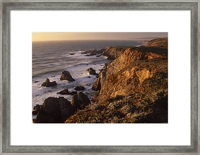 Bodega Head Framed Print by Soli Deo Gloria Wilderness And Wildlife Photography