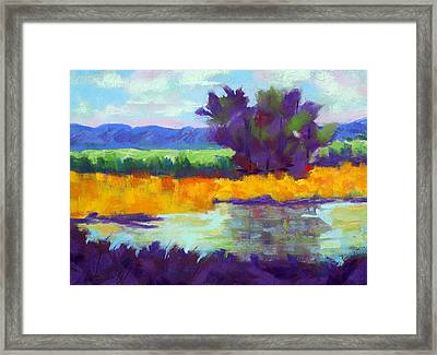 Bold And Beautiful Framed Print by Diana Tripp