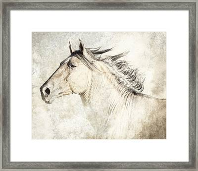 Bolero Framed Print by Ron  McGinnis