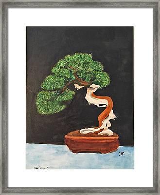 Bonsai-1 Framed Print