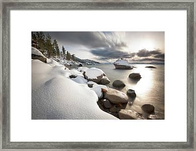Bonsai Dream Framed Print by Scott Warner