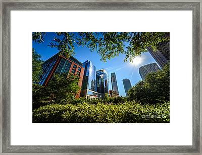 Boston Downtown City Buildings Through Trees Framed Print