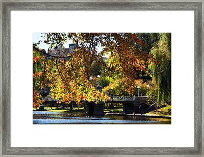 Framed Print featuring the photograph Boston Public Garden - Lagoon Bridge by Joann Vitali
