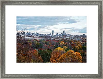 Boston Through The Autumn Trees Boston Ma Framed Print