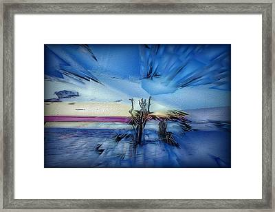 Botany Sunrise Framed Print