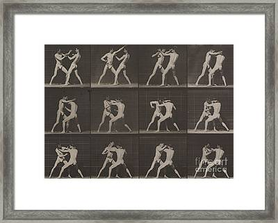 Boxing Framed Print by Eadweard Muybridge