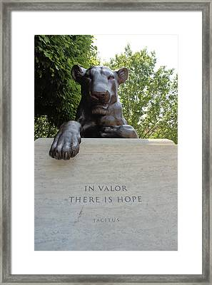 Brave Framed Print by Curlicue Photography