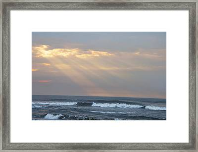 Breaking Through Framed Print by Bill Cannon