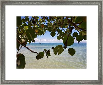 Bribie View Framed Print