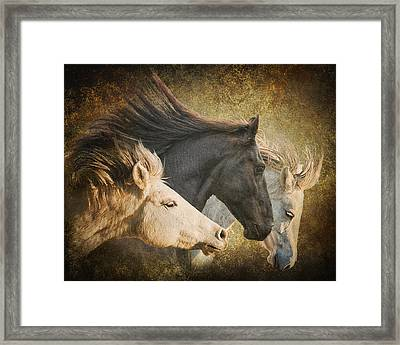 Brings The Thunder Framed Print by Ron McGinnis