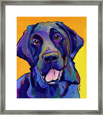 Buddy Framed Print by Pat Saunders-White