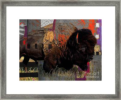 Buffalo Collection Framed Print by Marvin Blaine