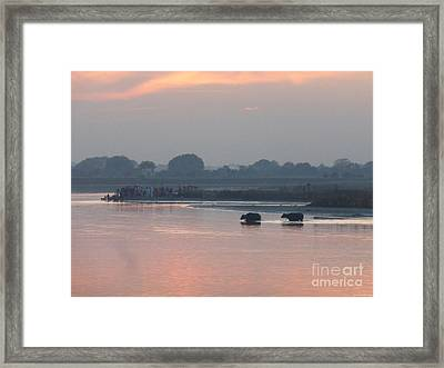 Framed Print featuring the photograph Buffalos Crossing The Yamuna River by Jean luc Comperat