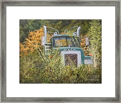 Bulldog In The Bushes Framed Print