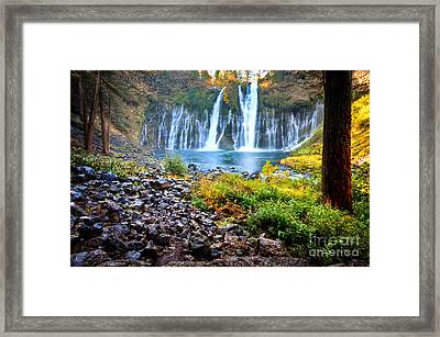 Burney Falls  Framed Print by Kelly Wade