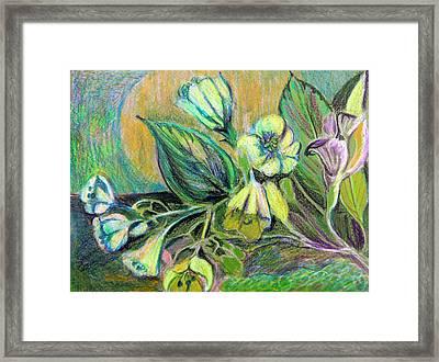 Buttercups Framed Print by Mindy Newman