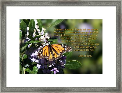 Butterfly With Scripture Framed Print by Linda Phelps