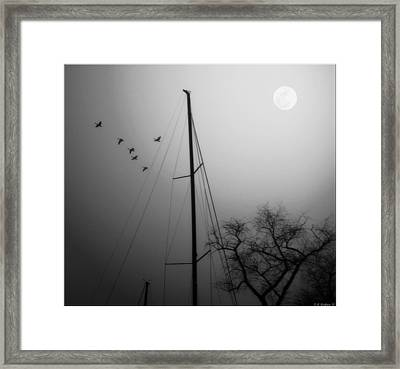 By The Pale Moon Framed Print by Brian Wallace