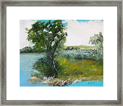 By The Snake River Framed Print