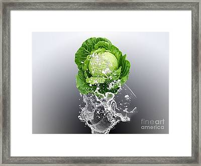 Cabbage Splash Framed Print by Marvin Blaine