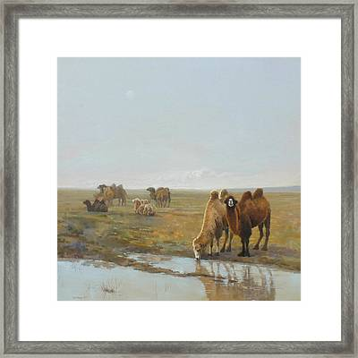 Camels Along The River Framed Print by Chen Baoyi