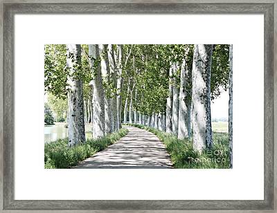 Canal Du Midi Framed Print by Cendrine Marrouat