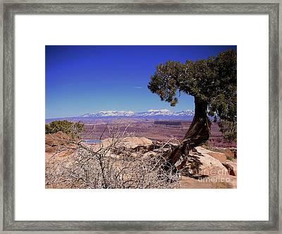 Canyonlands 4 Framed Print by Marty Koch