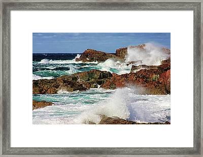Cape Bonavista, Newfoundland Framed Print