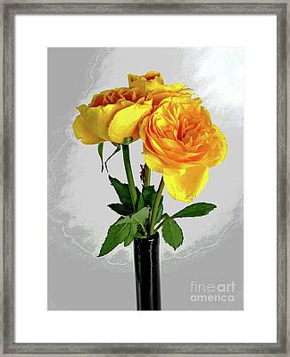 Captured Yellow Roses Framed Print