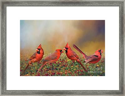 Framed Print featuring the photograph Cardinal Quartet by Bonnie Barry