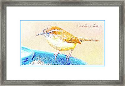 Carolina Wren, Winter Wren On Bird Feeder, Digital Art Framed Print by A Gurmankin