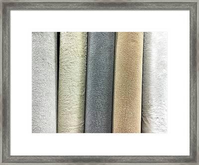 Carpet Shades Framed Print by Tom Gowanlock