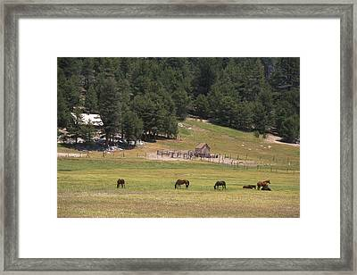 Casa Vieja Meadow - Golden Trout Wilderness Framed Print by Soli Deo Gloria Wilderness And Wildlife Photography