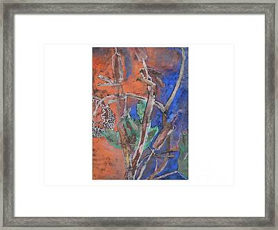 Cat Tails And Sun Flower Framed Print by Hal Newhouser