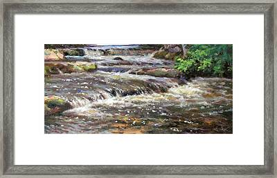 Cedar Creek Framed Print by Larry Seiler