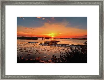 Cedar Key Framed Print by John M Bailey