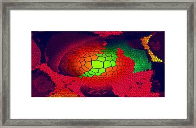Cell-transformation Xxl Framed Print by Ramon Labusch