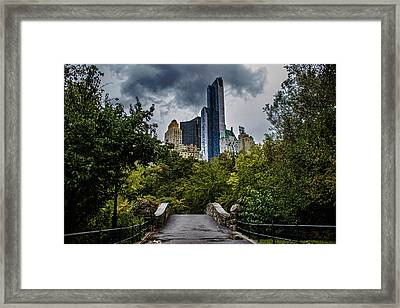 Central Park Framed Print by Martin Newman