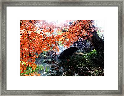 Central Park New York City Framed Print by Mark Ashkenazi
