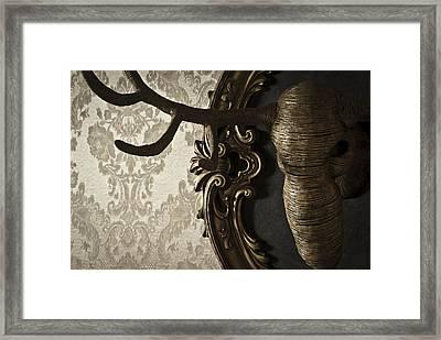 Cervo Framed Print by Francesca Dalla benetta