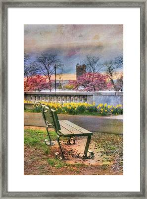 Charles River Esplanade - Boston Framed Print