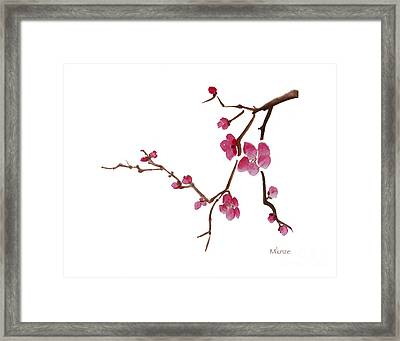Cherry Blossoms 1d Framed Print by McKenzie Leopold