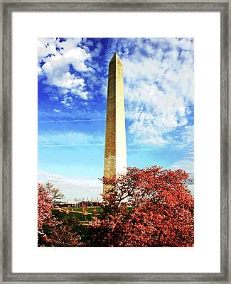 Cherry Blossoms At The Washington Monument Framed Print
